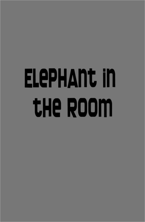 The Elephant in the Flipped Classroom